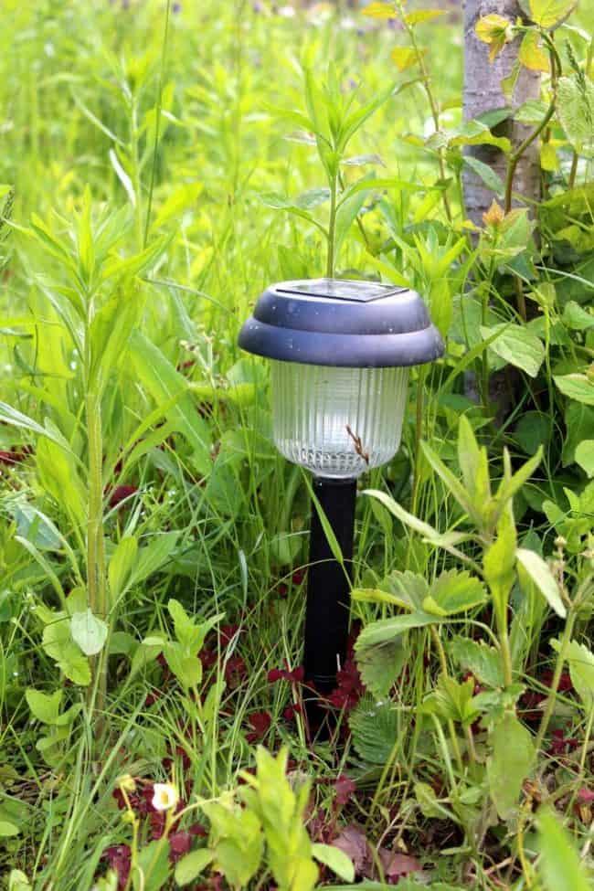 solar yard lantern